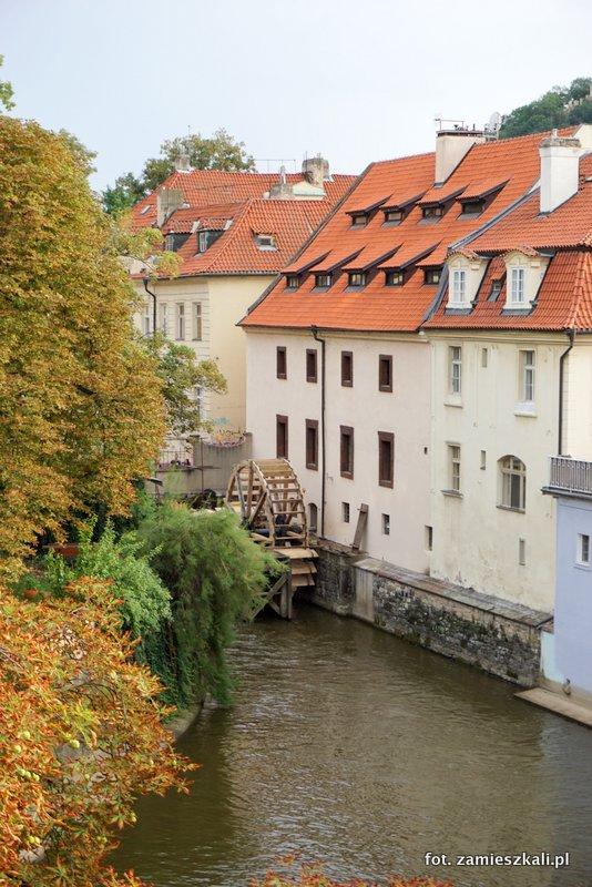 Mała Wenecja w Pradze