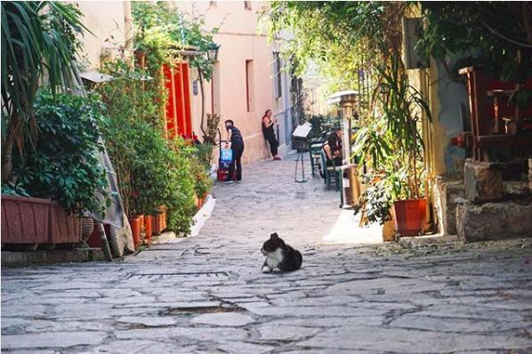 Ateny atrakcje. Co zwiedzić w Atenach?