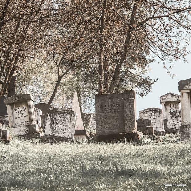 Zwiedzanie Sarajewa: cmentarz Żydowski w Sarajewie.
